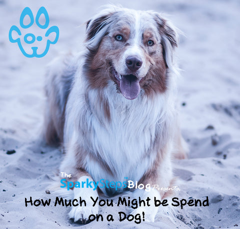Sparky Steps - How Much You Might Spend on Owning a Dog?