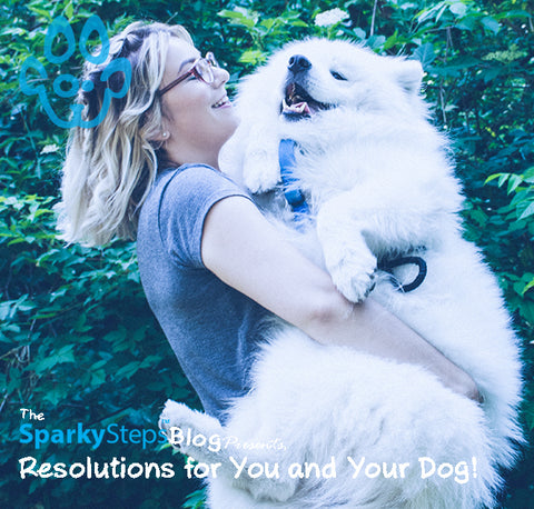 Sparky Steps - Goals and Resolutions for You and Your Dog