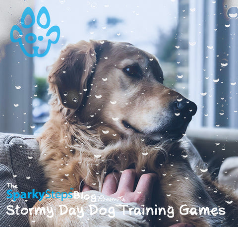Sparky Steps - Stormy Day Dog Training Games