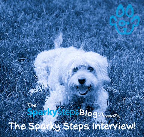 Sparky Steps - The Sparky Steps Interview