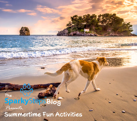 Sparky Steps - Summertime Fun Activities