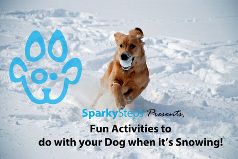 Sparky Steps - Fun Activities to do with your dog when it's Snowing!