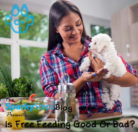 Is Free Feeding Good Or Bad For My Dog - Sparky Steps Chicago Pet Sitters - Article.jpg
