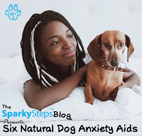Six Natural Dog Anxiety Aids - Sparky Steps Chicago Pet Sitters - Article