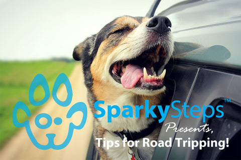 Sparky Steps - Tips for Road Tripping with Your Dog or Cat