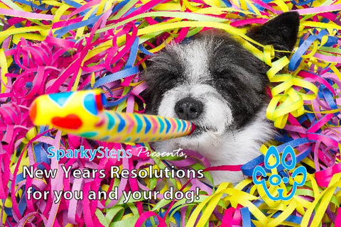Sparky Steps - New Year's Resolutions for you and your dog