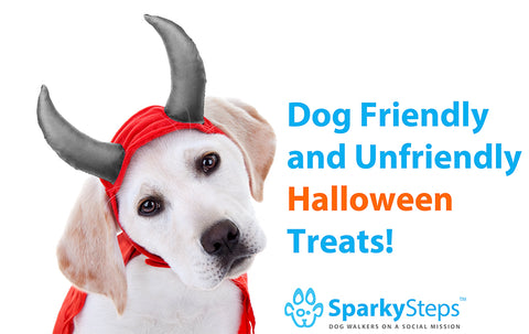 Sparky Steps - Dog Friendly and Unfriendly Halloween Treats!