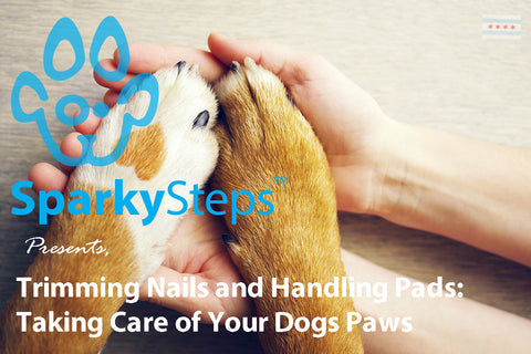 Sparky Steps - Trimming Nails and Handling Cracked Pads - Taking Care of Your Dogs Paws