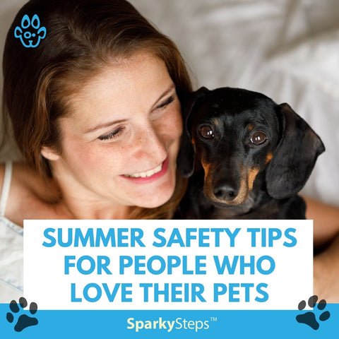 Summer Safety Tips For People Who Love Their Pets