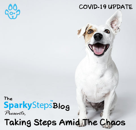 Taking Steps Among The Chaos - Sparky Steps Chicago Pet Sitters - Article