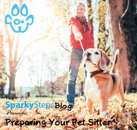 The Ultimate Guide To Preparing Your Pet Sitter - Sparky Steps Chicago Pet Sitters - Article