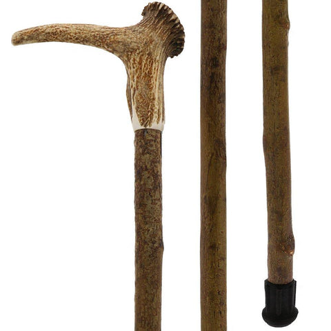 Fashionable Canes Staghorn with crown handle with Hazelwood Shaft