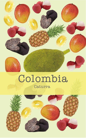 Colombia Finca La Cabana Caturra (Extend Fermentation Natural)