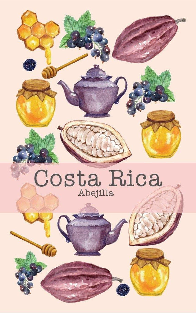 Costa Rica San Vita La Abejilla (Black Honey) - Return Coffee Roastery