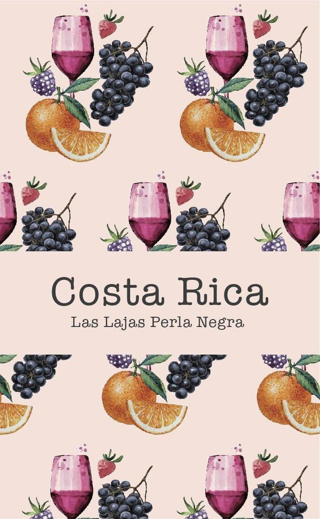 Costa Rica Las Lajas Perla Negra (Natural) - Return Coffee Roastery