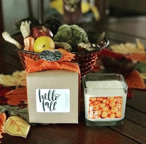 Fall Soy | Aromatherapy Candle | 10oz