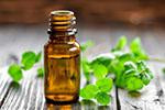 Thyme Essential Oil | Thymus vulgaris | Spain