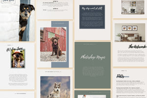 Inquiry Guide PSD Template for Pet Photography