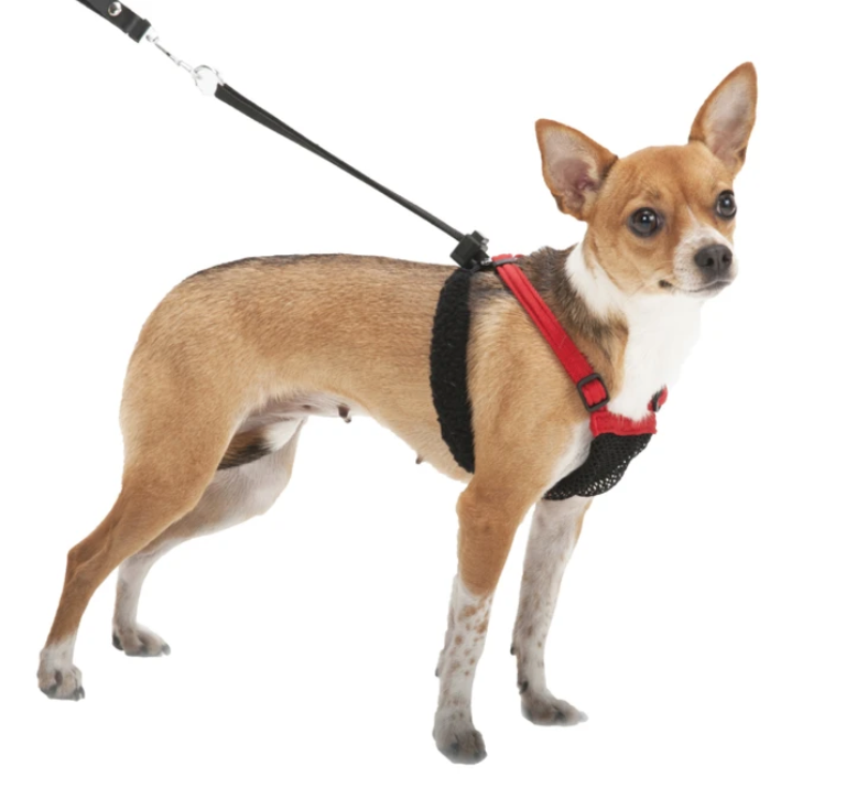 Sporn® Non-Pull Mesh Harness™ with No Pull Dog Harness Technology for Freedom from Pulling