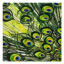 Load image into Gallery viewer, Peacock Feathers Cloth Napkins