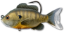 LIVETARGET Sunfish Soft Body Swimbait
