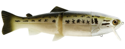 Castaic Hard Head 6 Inch Slow Sinking Soft Body Swimbait