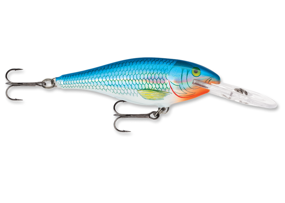 Holographic Blue Shiner