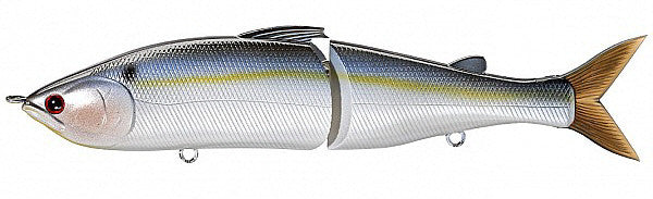 Pearl Threadfin Shad