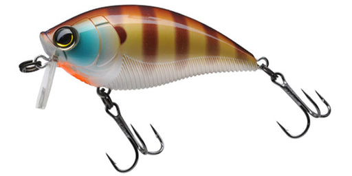 Yo-Zuri 3Db Wake Bait Floating Diver 2 3/4 Inch Shallow Square Bill Crankbait