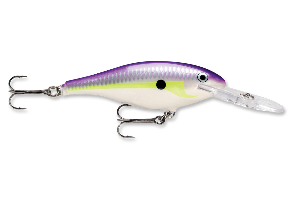 Regal Shad