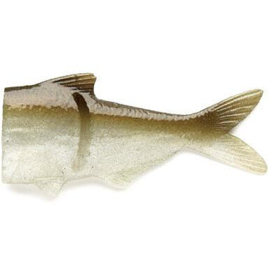 Green Threadfin Shad