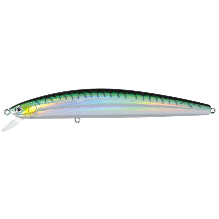 Green Mackerel