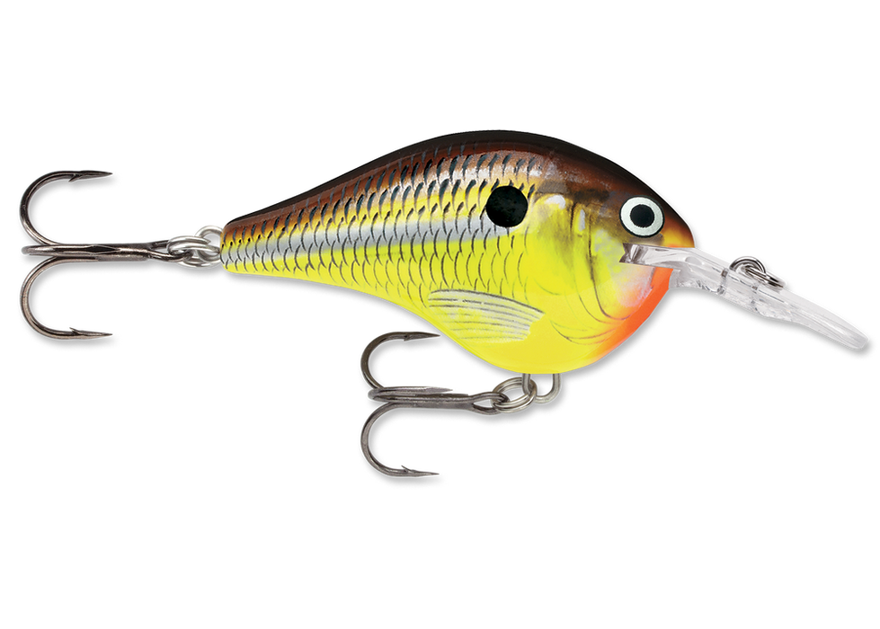3 Rapala DT-6 Lures