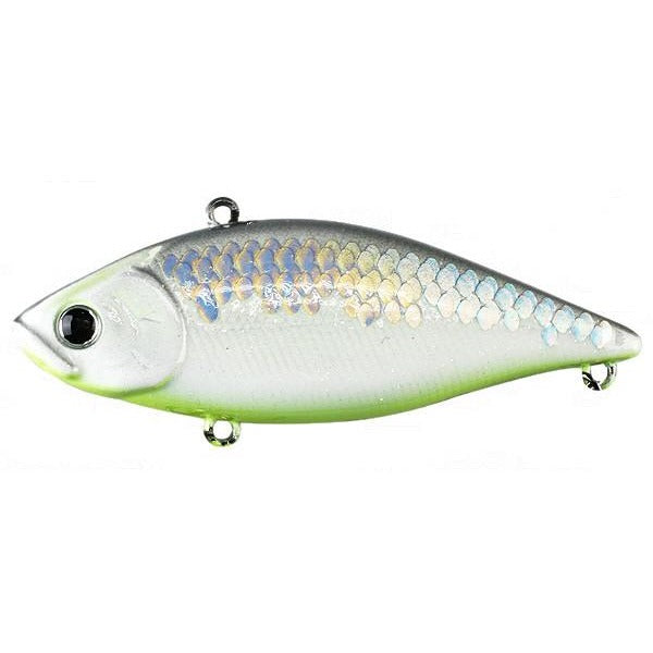 MS Gunmetal Shad