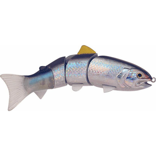 Blue Back Herring