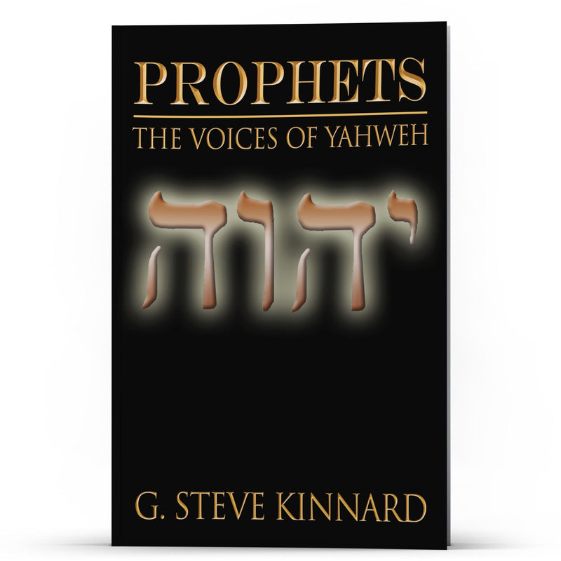 Prophets I—The Voices of Yahweh - IlluminationPublishers
