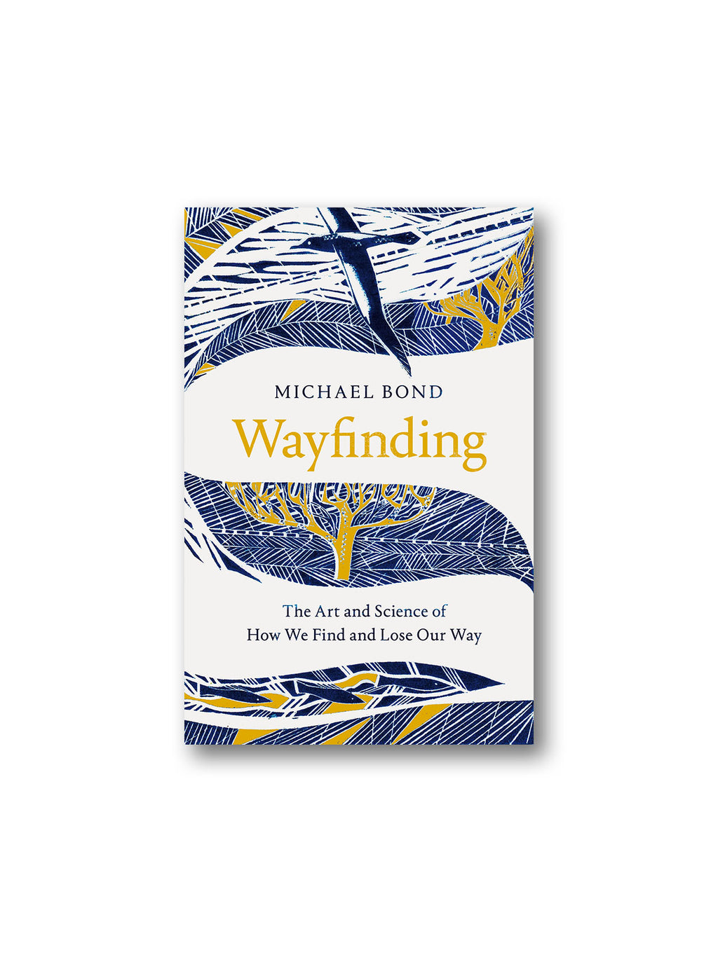 Wayfinding : The Art and Science of How We Find and Lose Our Way