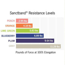 Load image into Gallery viewer, OPTP Sanctband Resistive Exercise Band