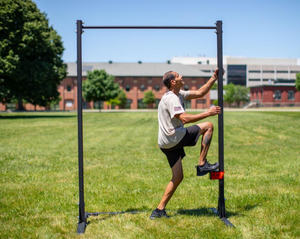 Rogue MIL Pull-Up Station (ACFT)