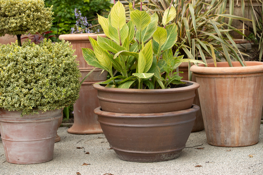 Large Matte Brown Terracotta Bowls