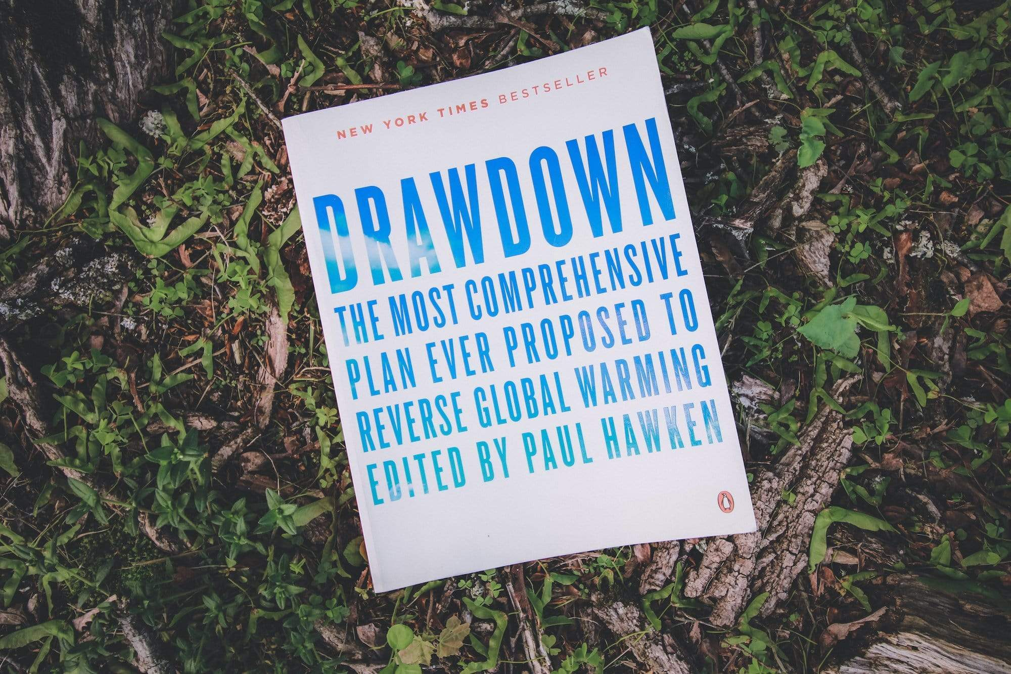 Drawdown book cover on grass in forest