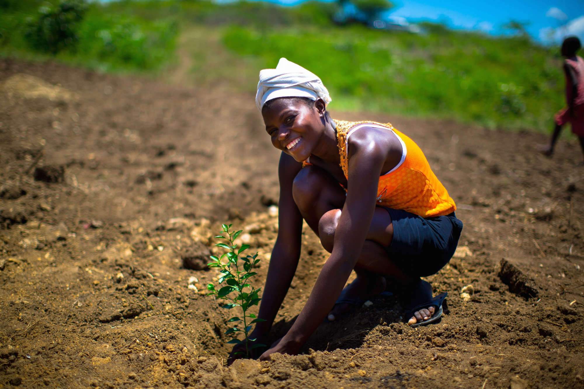 24K Trees Planted in Kenya, Haiti, and India