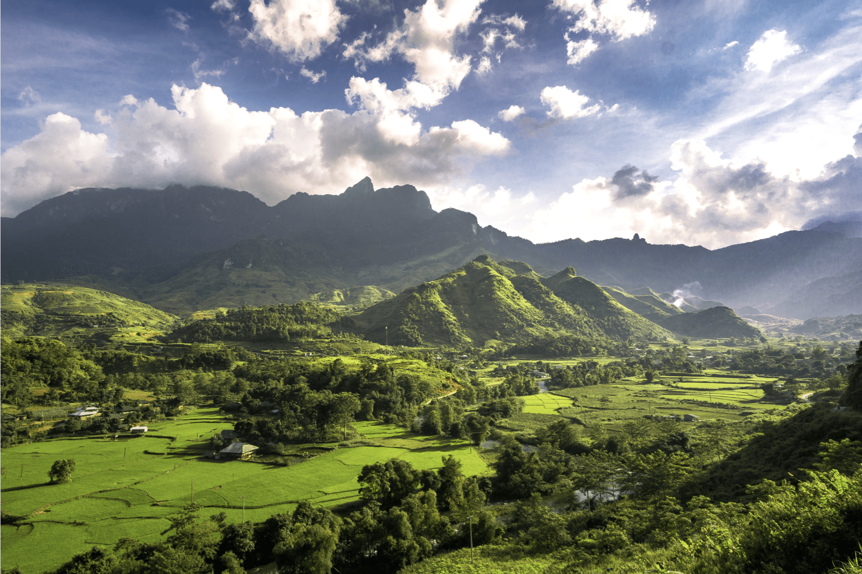 Greenery in Vietnam with many trees alongside a mountain with clouds and blue sky