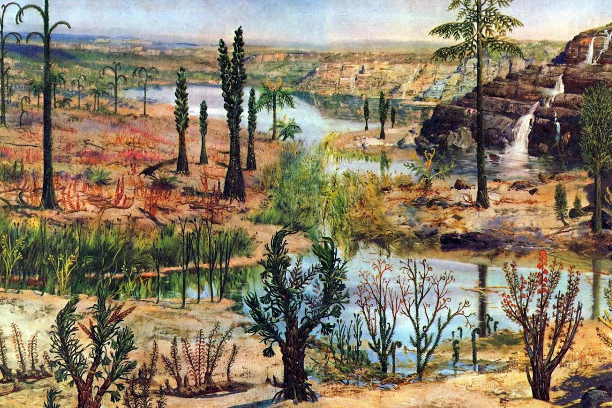 Artistic representation of mid-Devonian forest