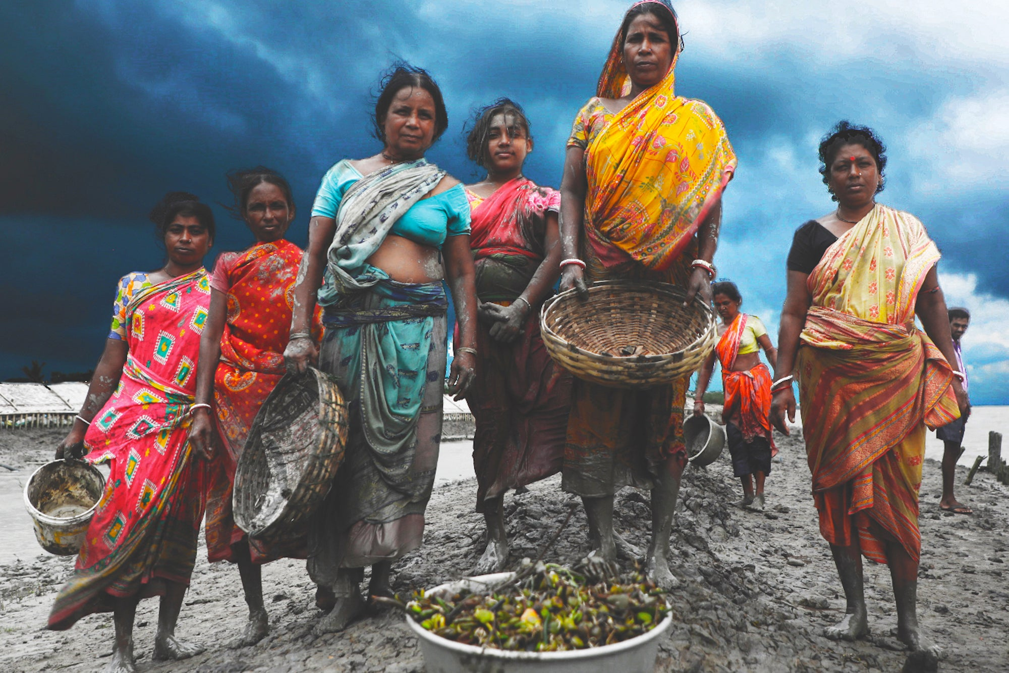 women on beach planting trees india