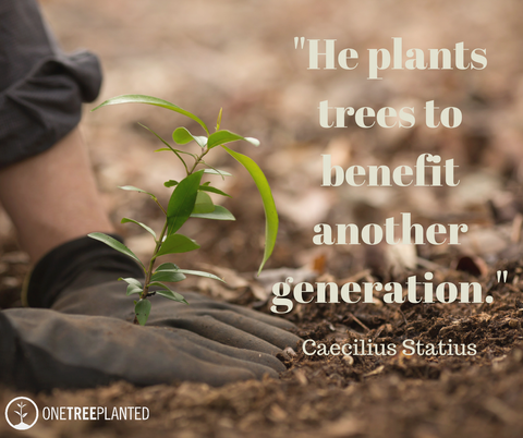 He Plants Trees To Benefit Another Generation