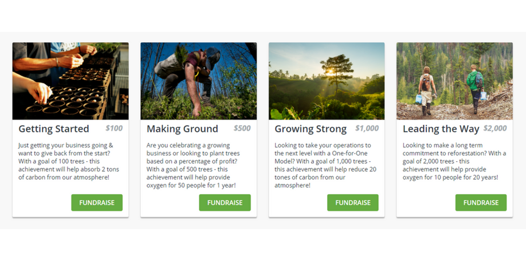 Impact Levels Reforestation Grassroots Campaign