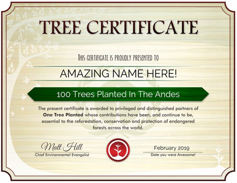 One Tree Planted Tree Certificate for the Andes