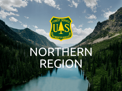 Plant Trees in Northern US - One Tree Planted