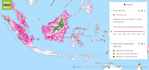 Map of deforestation in Indonesia